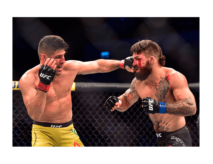 Турнир UFC ON ESPN +31, Лас Вегас. Висенте Люке — Ренди Браун