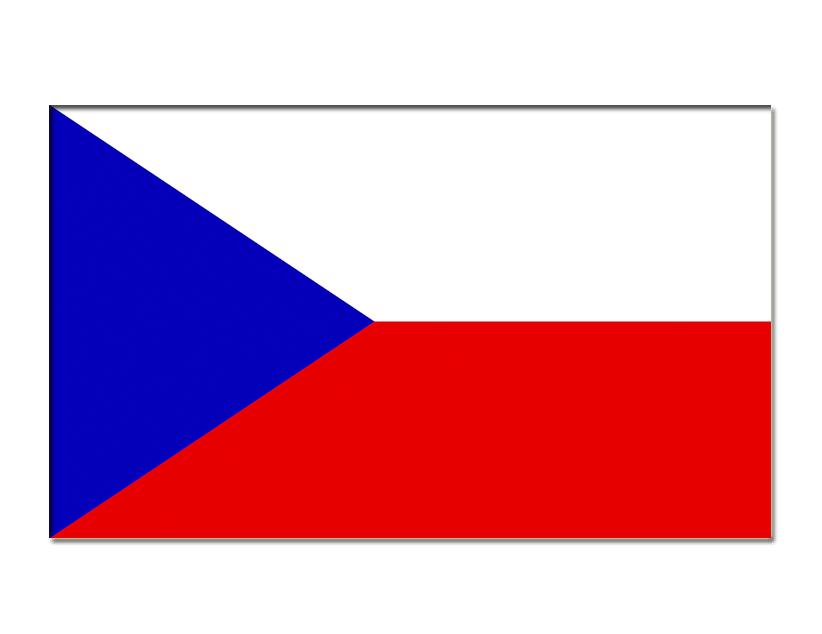 Евро-2020. Группа D. Сборная Чехии