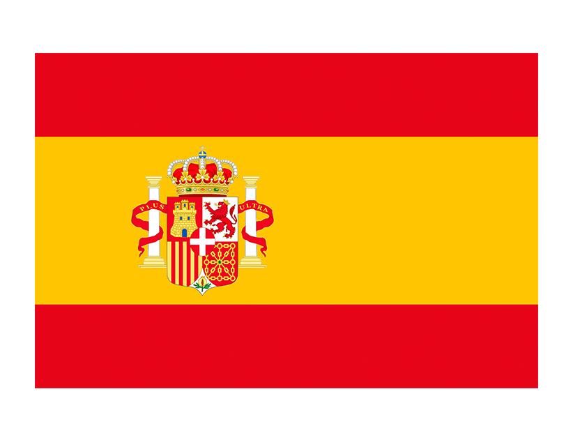 Евро-2020. Группа E. Сборная Испании