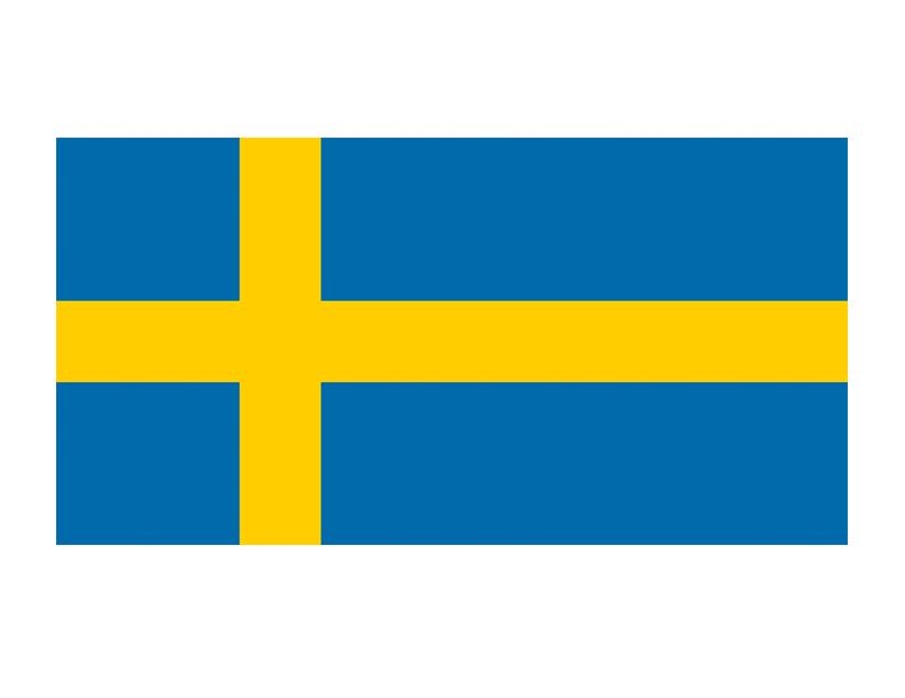 Евро-2020. Группа E. Сборная Швеции