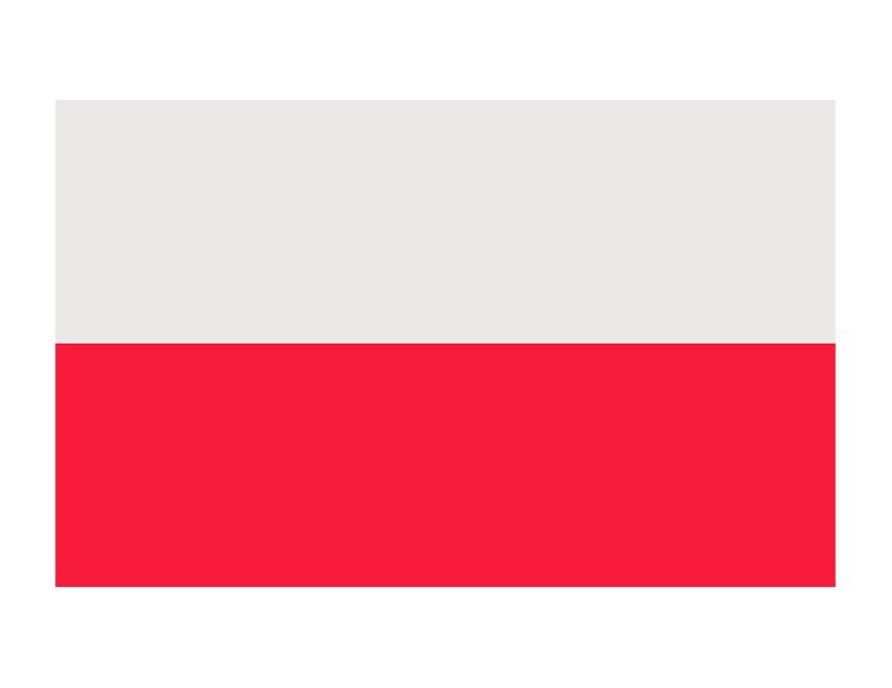 Евро-2020. Группа E. Сборная Польши