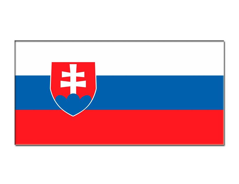 Евро-2020. Группа E. Сборная Словакии