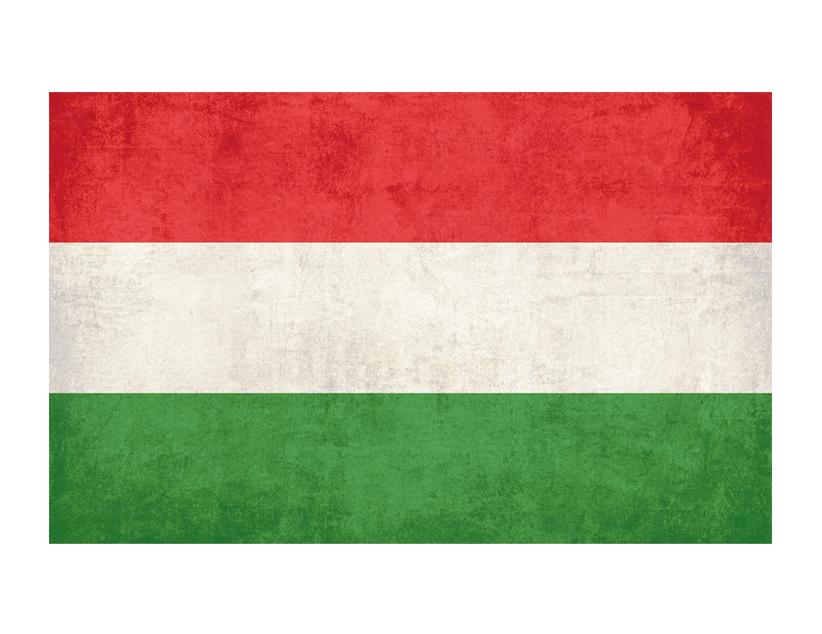 Евро-2020. Группа F. Сборная Венгрии